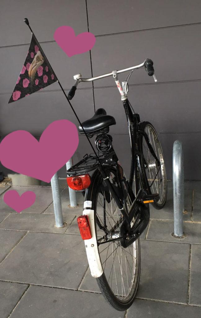 Fahrradwimpel